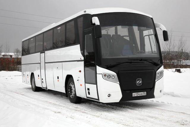 Автобус ГОЛАЗ Круиз