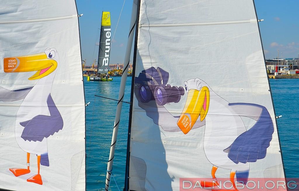 Volvo_Ocean_Race_2014_035