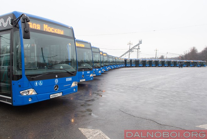 100 автобусов  Mercedes Conecto для Столицы_03