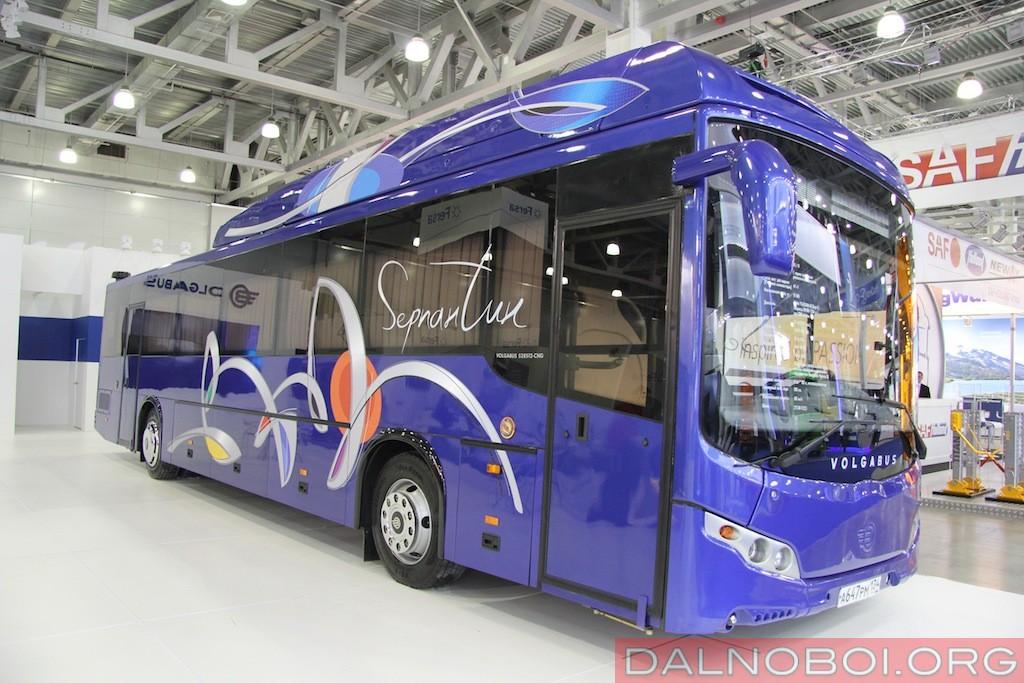 Volgabus-528512_CNG_001