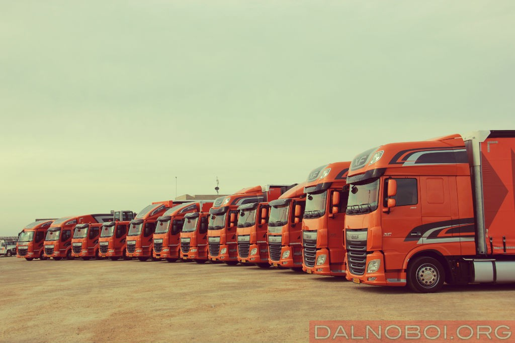 DAF-LF_Edition_Barselona_2016_003